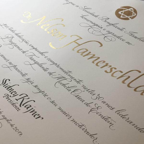 Certificado de Premiação Albert Einstein